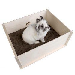 bunnyNature bunnyInteractive DiggingBox