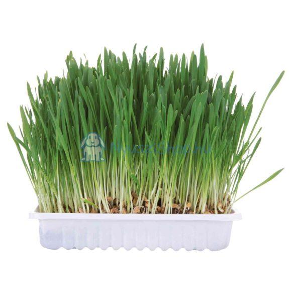 Trixie 6035 Kisállat fű