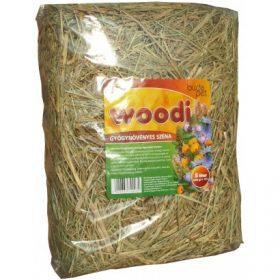 BudaPet Woodi